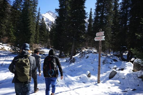 雪道を進む