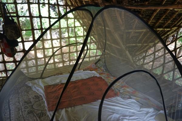 部屋と蚊帳