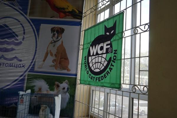 主催のWCF