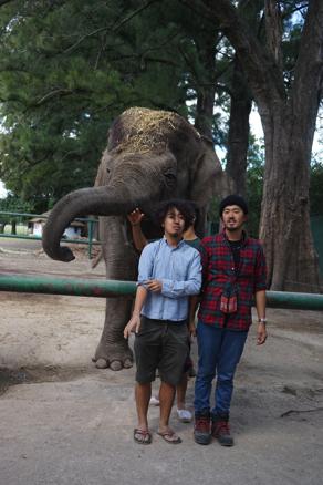象の前で1