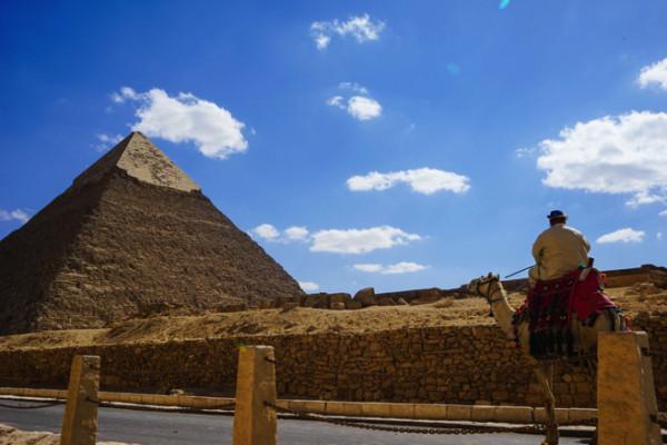 ラクダとピラミッド1