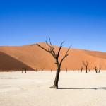 ナミブ砂漠|レンタカー2日目。まるで絵画なデッドフレイへ。